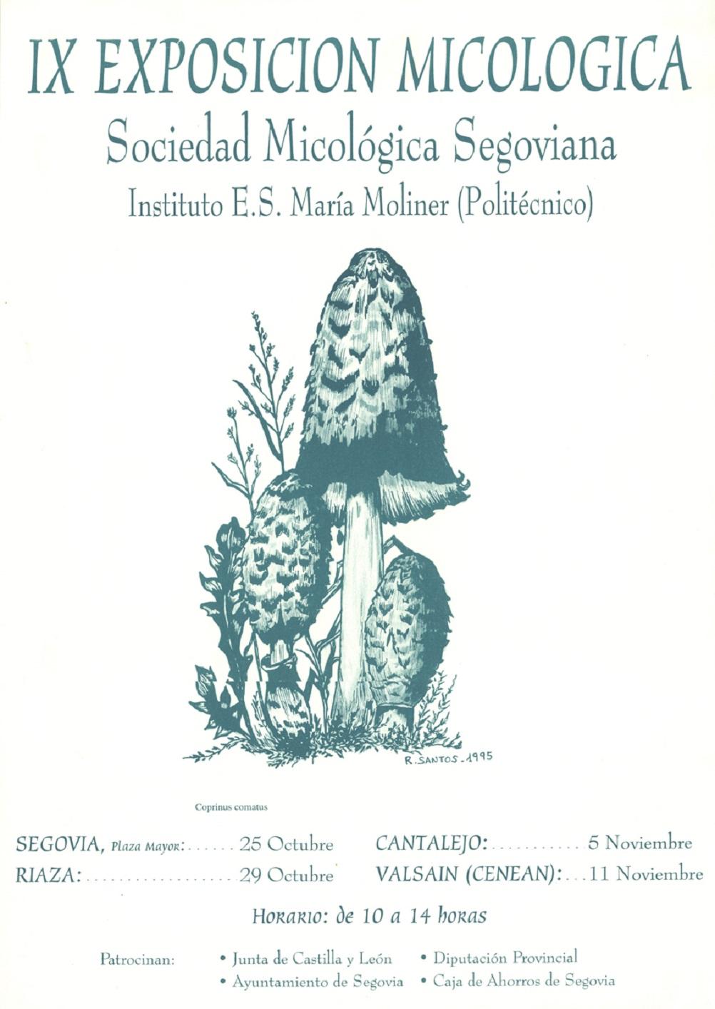 Exposición IX
