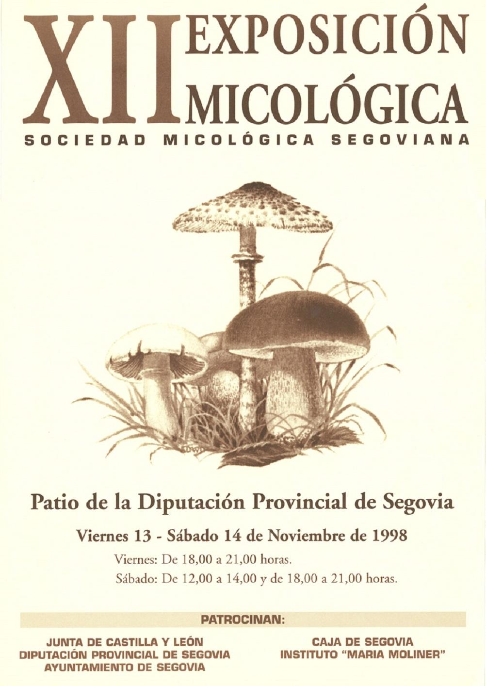 Exposición XII