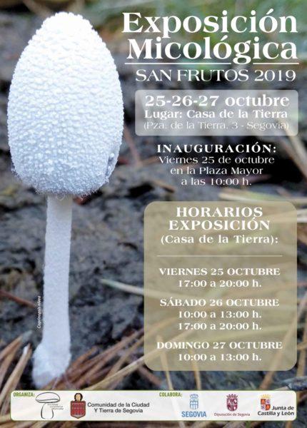 cartel-exposicion-micologica(2019)